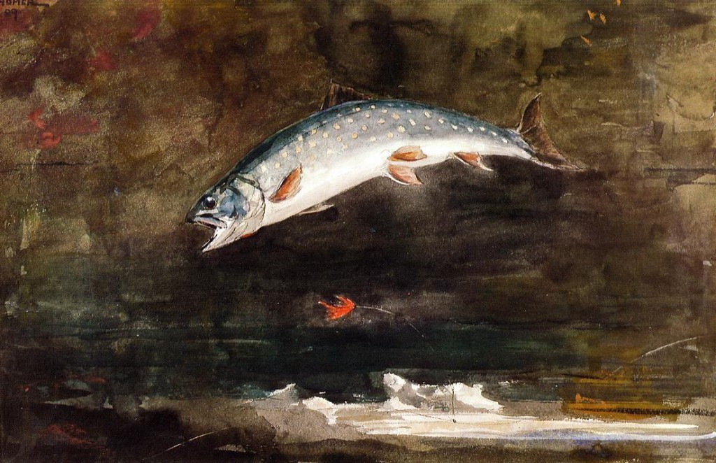 Jumping-Trout